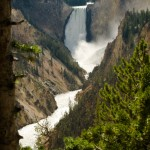 Lower Falls from Artists Point, Yellowstone