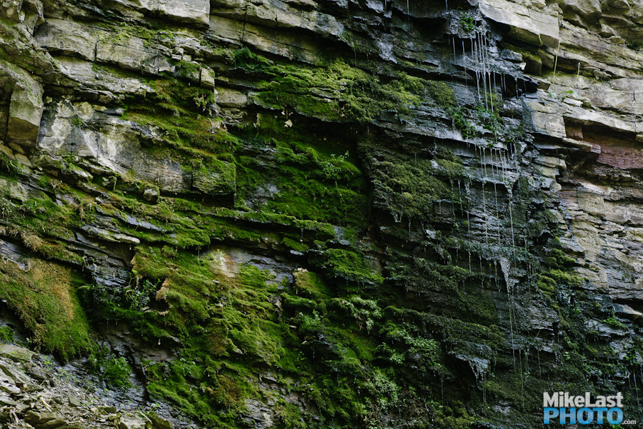Moss and Water - Upper Chedoke Falls - Hamilton, ON