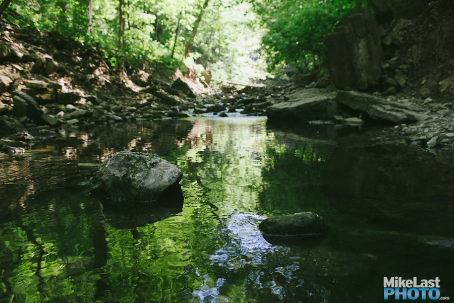 Chedoke Creek - Hamilton, ON