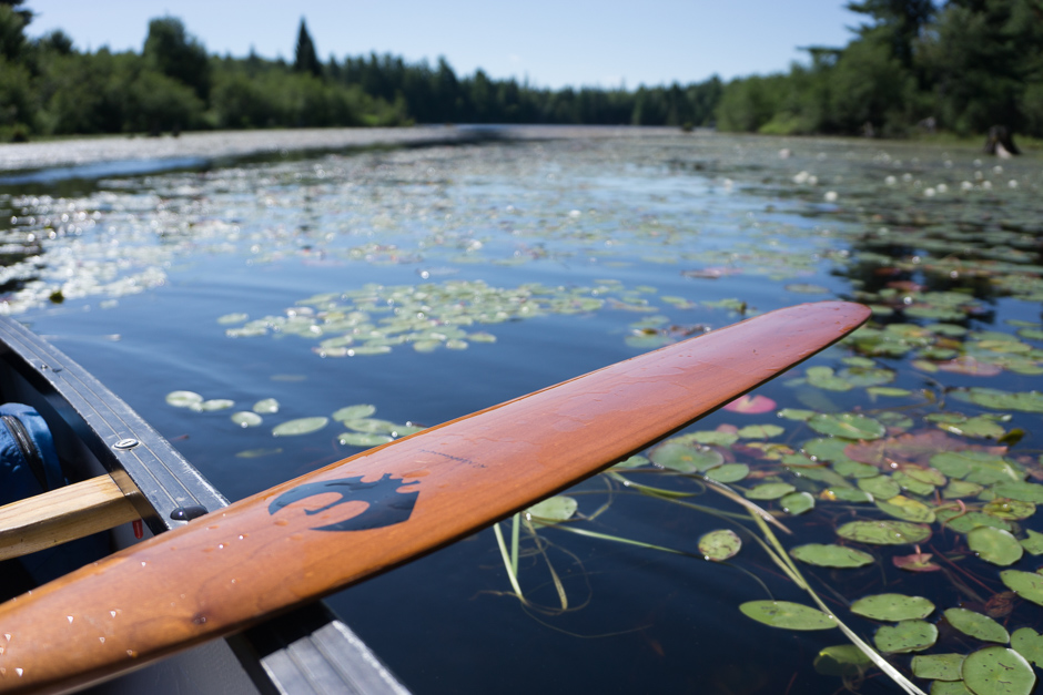 MLP-20150802-CanoeTrip-01694