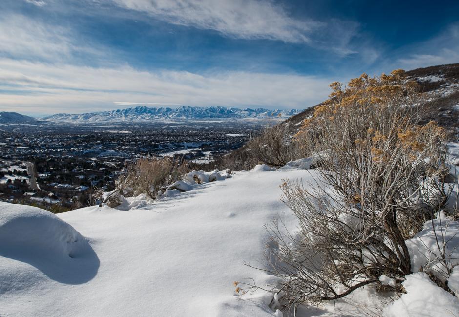 MLP-20151220-Utah-8318