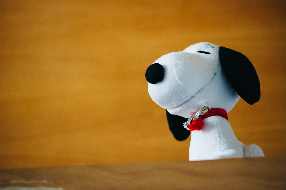 Snoopy the Ring Bearer - Kim and Kevin - Paradise Banquet Hall - Vaughan Ontario