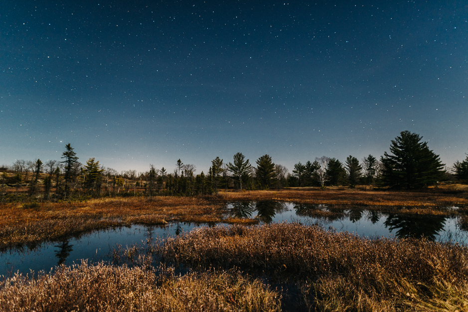 Stars over the Torrance Barrens Dark Sky Preserve